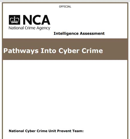 Pathways Into Cyber Crime